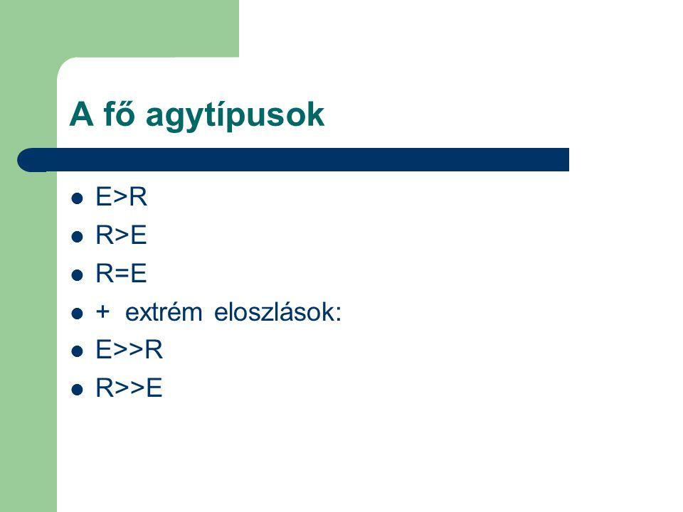 A fő agytípusok E>R R>E R=E + extrém eloszlások: E>>R R>>E