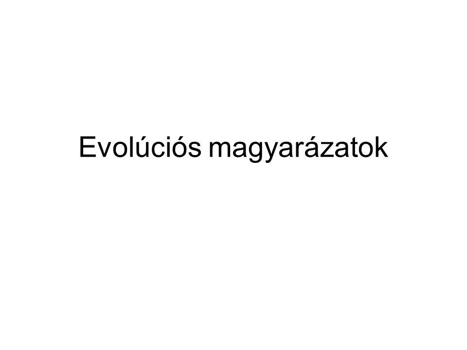 Evolúciós magyarázatok