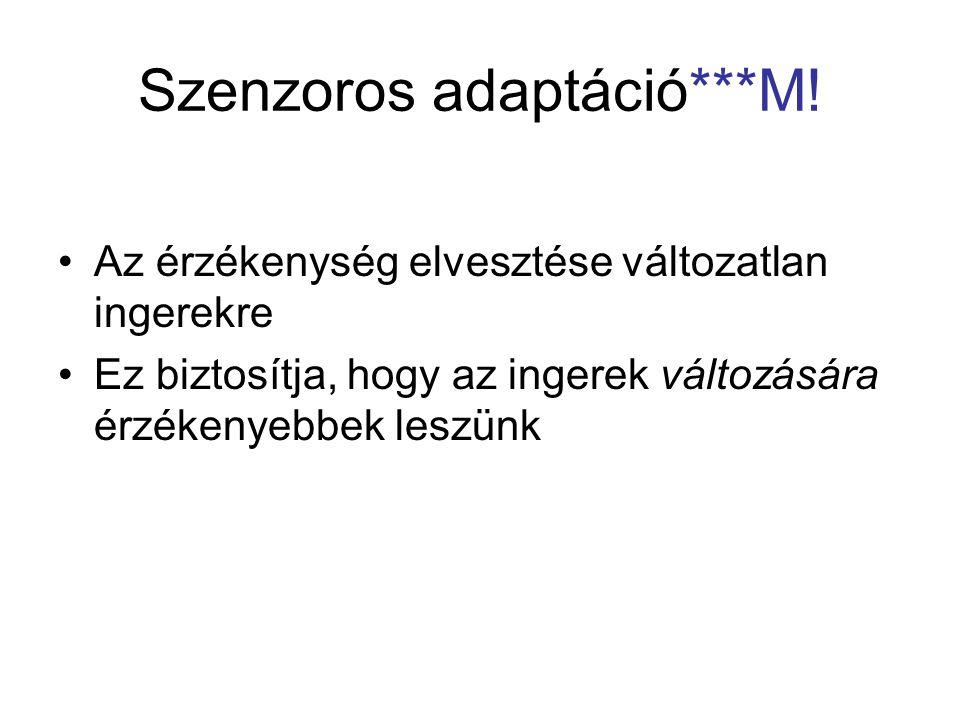 Szenzoros adaptáció***M.