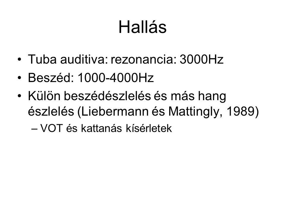 Hallás Tuba auditiva: rezonancia: 3000Hz Beszéd: 1000-4000Hz Külön beszédészlelés és más hang észlelés (Liebermann és Mattingly, 1989) –VOT és kattanás kísérletek