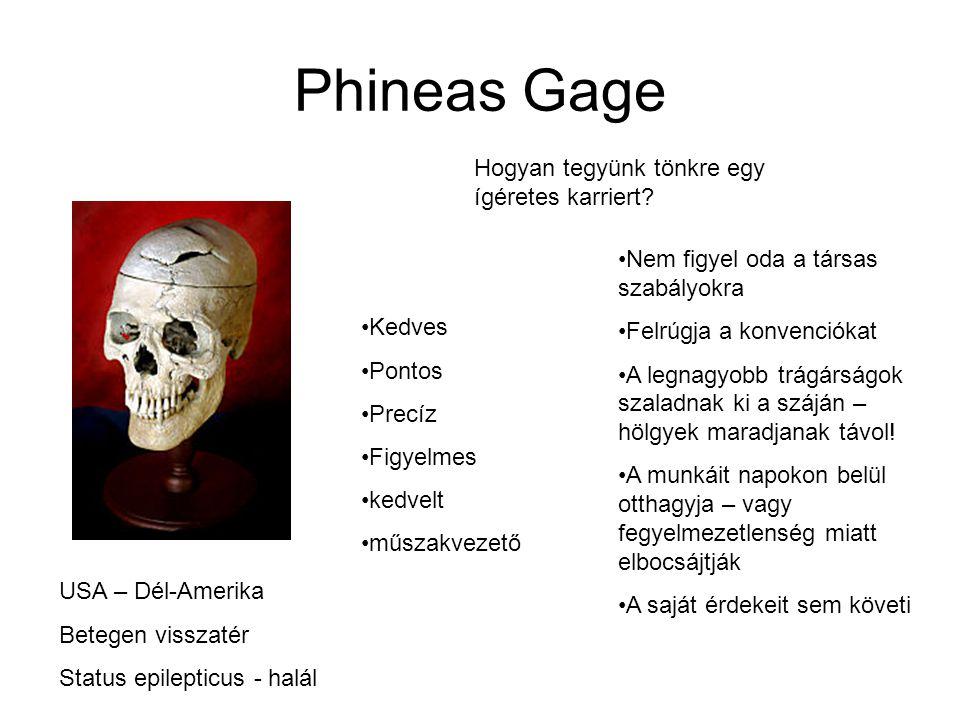 Phineas Gage Hogyan tegyünk tönkre egy ígéretes karriert.