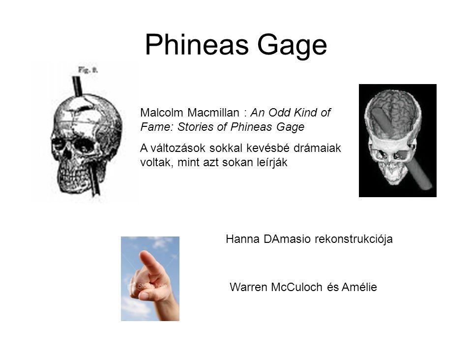 Phineas Gage Malcolm Macmillan : An Odd Kind of Fame: Stories of Phineas Gage A változások sokkal kevésbé drámaiak voltak, mint azt sokan leírják Warren McCuloch és Amélie Hanna DAmasio rekonstrukciója