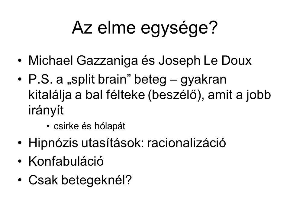 Az elme egysége.Michael Gazzaniga és Joseph Le Doux P.S.