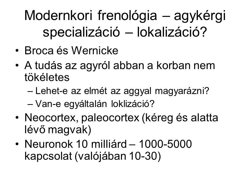 Modernkori frenológia – agykérgi specializáció – lokalizáció.