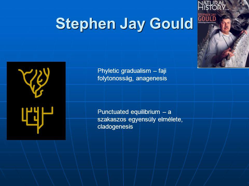 Stephen Jay Gould Phyletic gradualism – faji folytonosság, anagenesis Punctuated equilibrium – a szakaszos egyensúly elmélete, cladogenesis