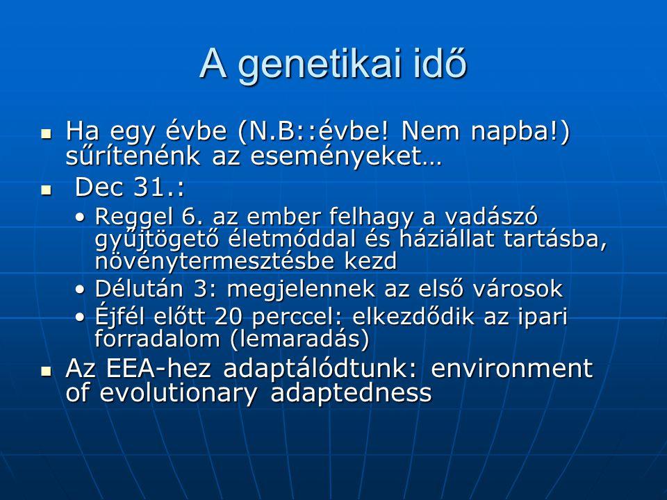 A genetikai idő Ha egy évbe (N.B::évbe.