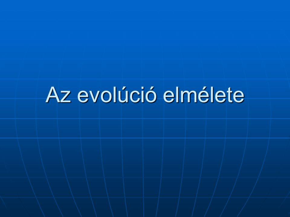 Az evolúciós szerszámosláda Miért van többféle szerszám, miért nem egy univerzális.
