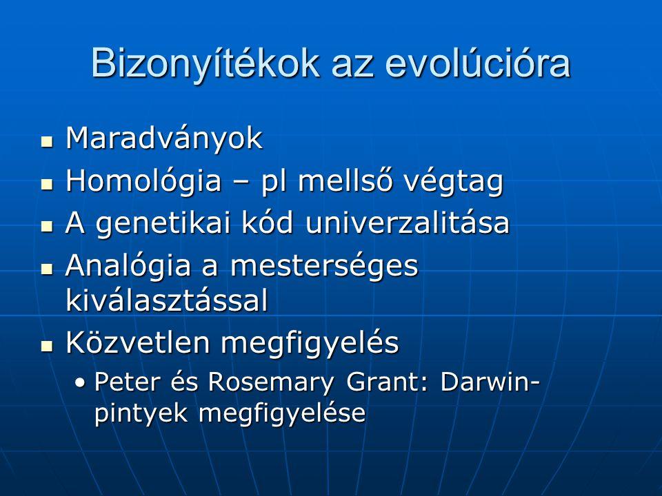 Bizonyítékok az evolúcióra Maradványok Maradványok Homológia – pl mellső végtag Homológia – pl mellső végtag A genetikai kód univerzalitása A genetikai kód univerzalitása Analógia a mesterséges kiválasztással Analógia a mesterséges kiválasztással Közvetlen megfigyelés Közvetlen megfigyelés Peter és Rosemary Grant: Darwin- pintyek megfigyelésePeter és Rosemary Grant: Darwin- pintyek megfigyelése
