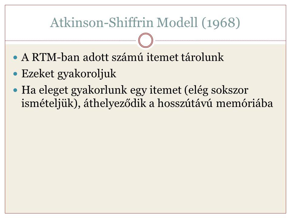 Atkinson-Shiffrin Modell (1968) A RTM-ban adott számú itemet tárolunk Ezeket gyakoroljuk Ha eleget gyakorlunk egy itemet (elég sokszor ismételjük), át