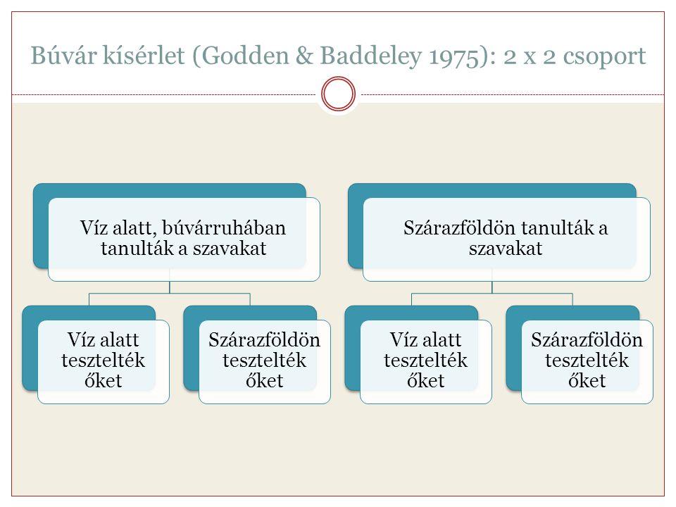 Búvár kísérlet (Godden & Baddeley 1975): 2 x 2 csoport Víz alatt, búvárruhában tanulták a szavakat Víz alatt tesztelték őket Szárazföldön tesztelték ő