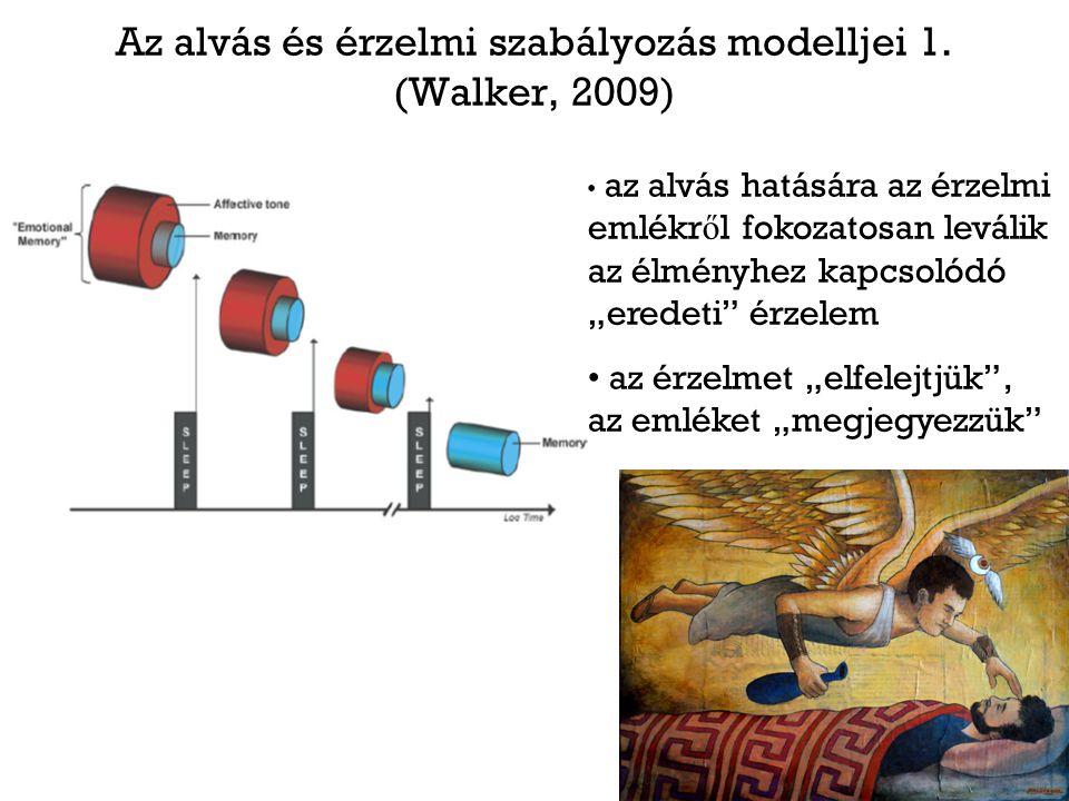 """Az alvás és érzelmi szabályozás modelljei 1. (Walker, 2009) az alvás hatására az érzelmi emlékr ő l fokozatosan leválik az élményhez kapcsolódó """"erede"""