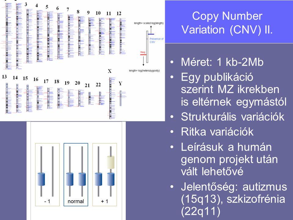 Copy Number Variation (CNV) II. Méret: 1 kb-2Mb Egy publikáció szerint MZ ikrekben is eltérnek egymástól Strukturális variációk Ritka variációk Leírás