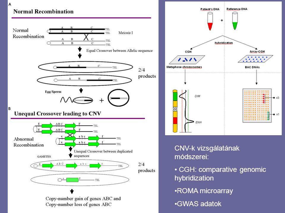 CNV-k vizsgálatának módszerei: CGH: comparative genomic hybridization ROMA microarray GWAS adatok