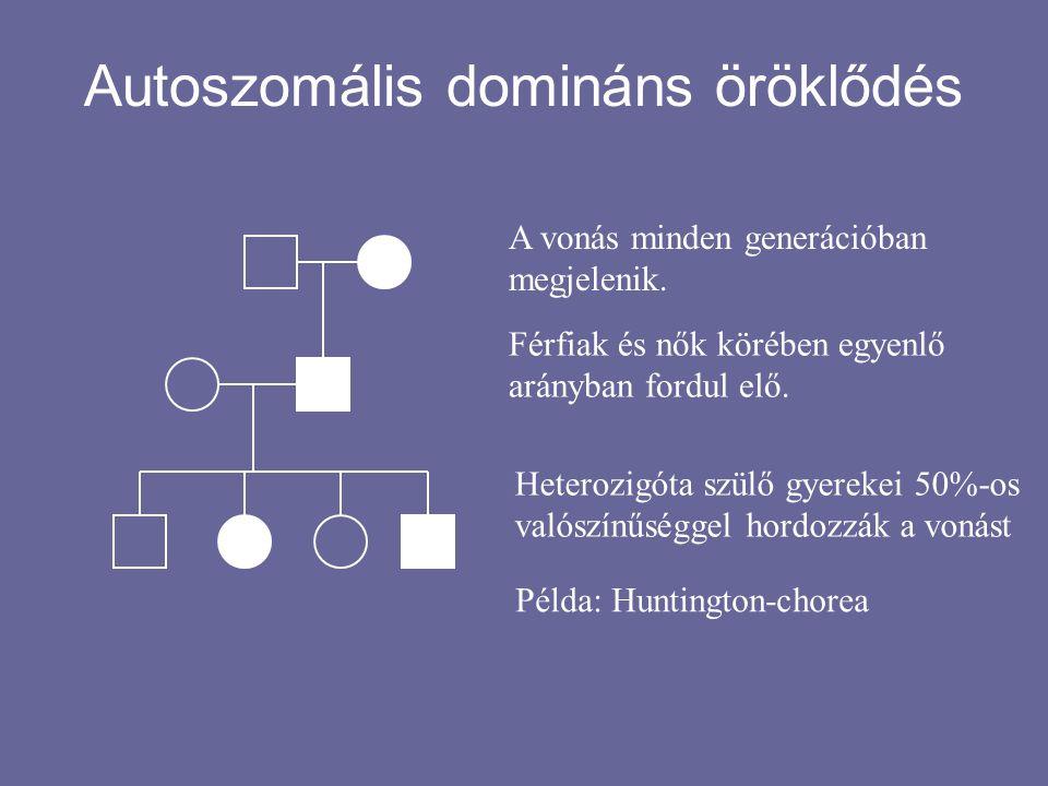 Autoszomális domináns öröklődés A vonás minden generációban megjelenik. Férfiak és nők körében egyenlő arányban fordul elő. Heterozigóta szülő gyereke