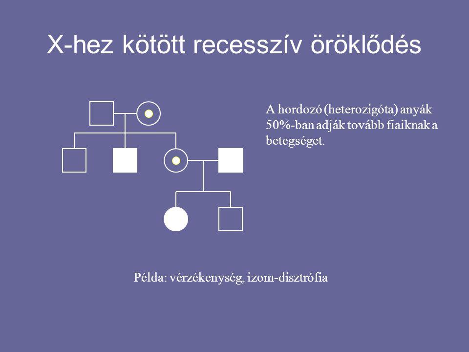 X-hez kötött recesszív öröklődés A hordozó (heterozigóta) anyák 50%-ban adják tovább fiaiknak a betegséget. Példa: vérzékenység, izom-disztrófia