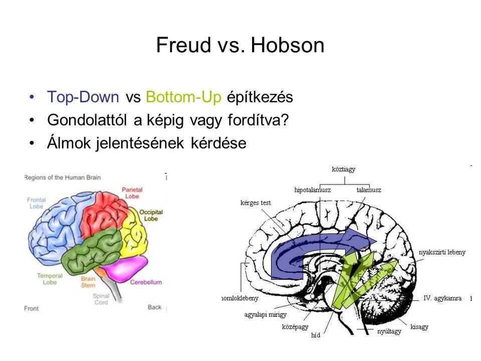 Freud vs. Hobson Top-Down vs Bottom-Up építkezés Gondolattól a képig vagy fordítva? Álmok jelentésének kérdése