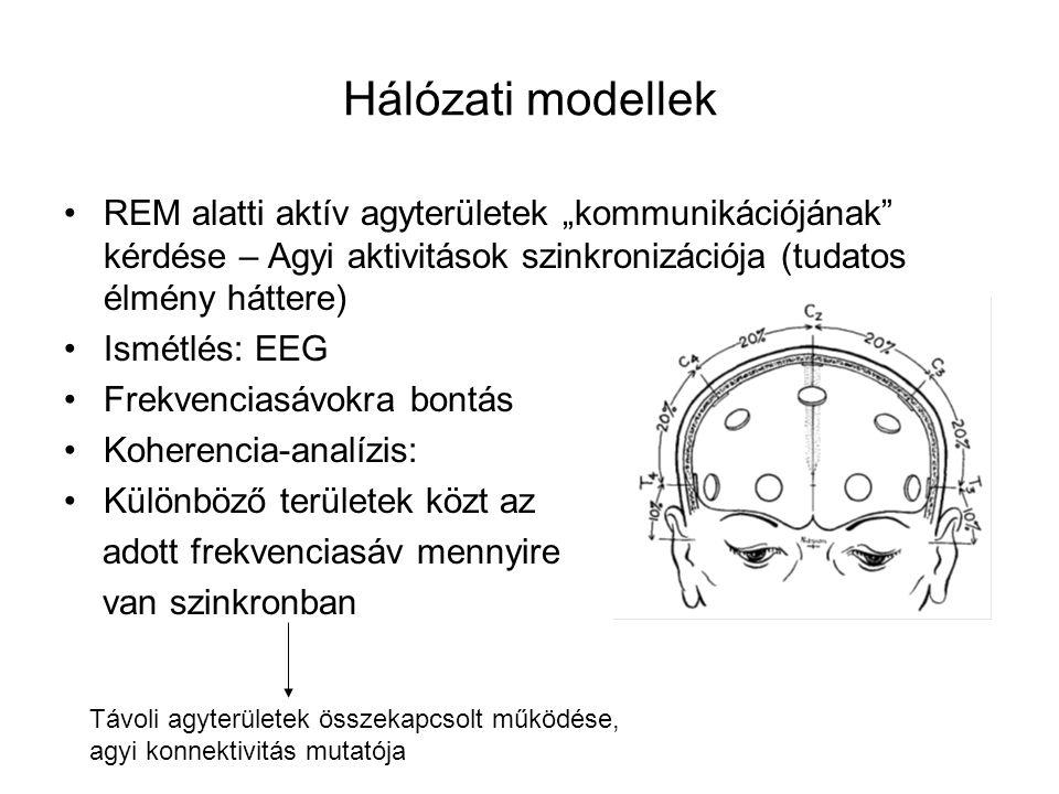 """Hálózati modellek REM alatti aktív agyterületek """"kommunikációjának"""" kérdése – Agyi aktivitások szinkronizációja (tudatos élmény háttere) Ismétlés: EEG"""