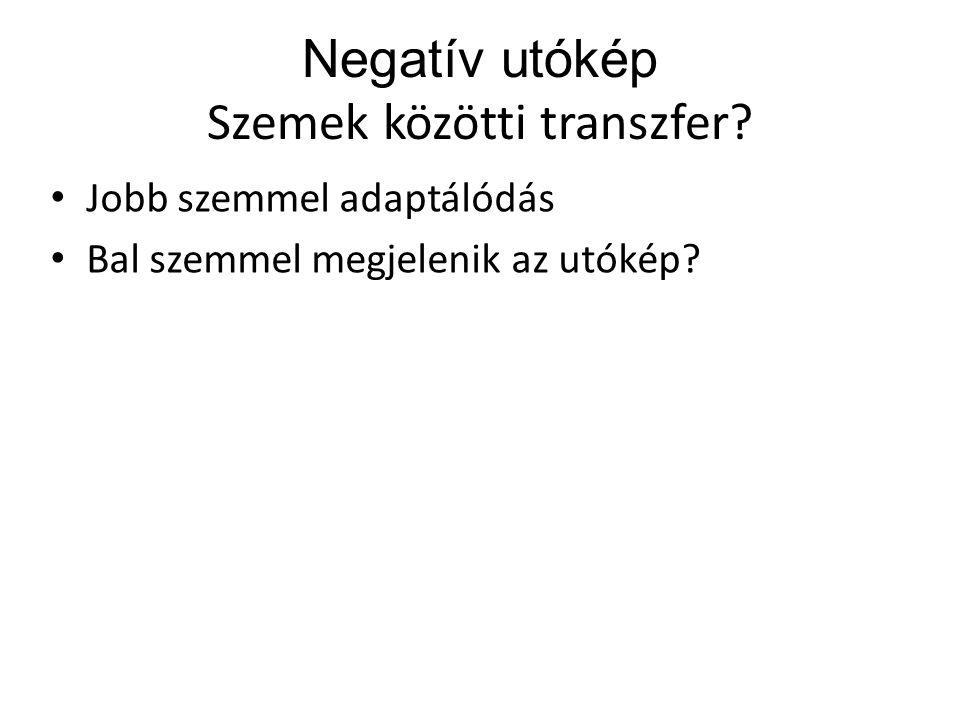 Negatív utókép Szemek közötti transzfer? Jobb szemmel adaptálódás Bal szemmel megjelenik az utókép?