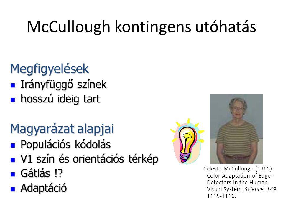 McCullough kontingens utóhatás Celeste McCullough (1965). Color Adaptation of Edge- Detectors in the Human Visual System. Science, 149, 1115-1116. Meg