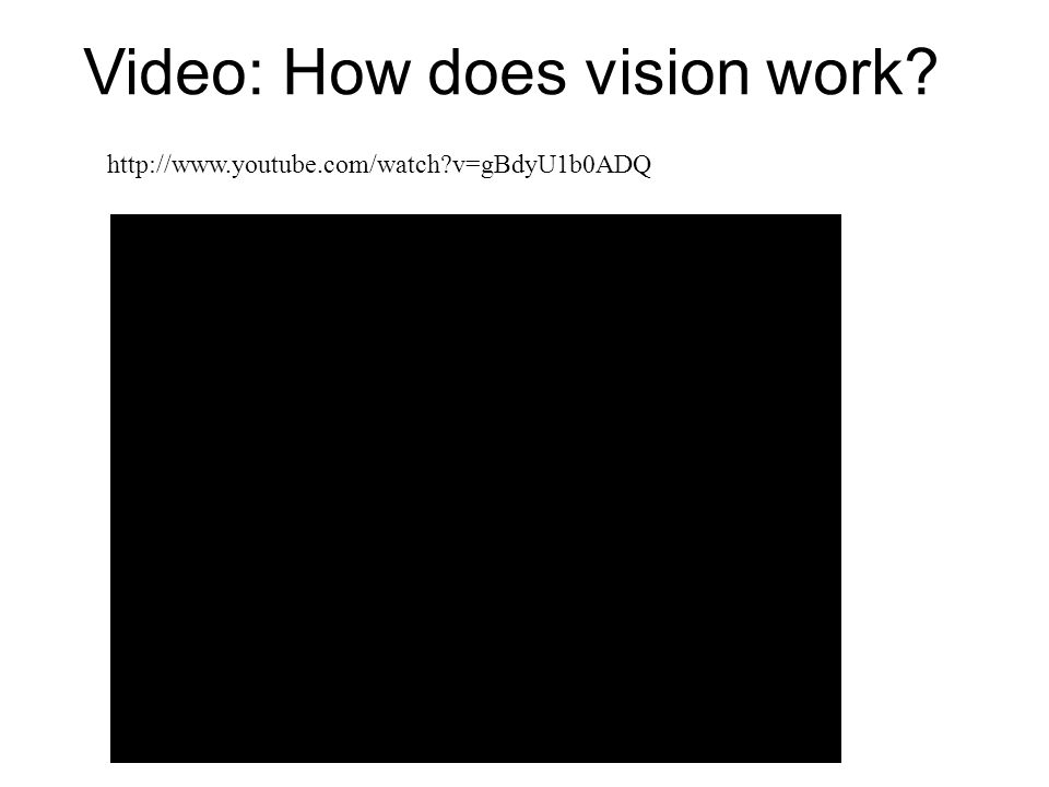 Video: How does vision work? http://www.youtube.com/watch?v=gBdyU1b0ADQ