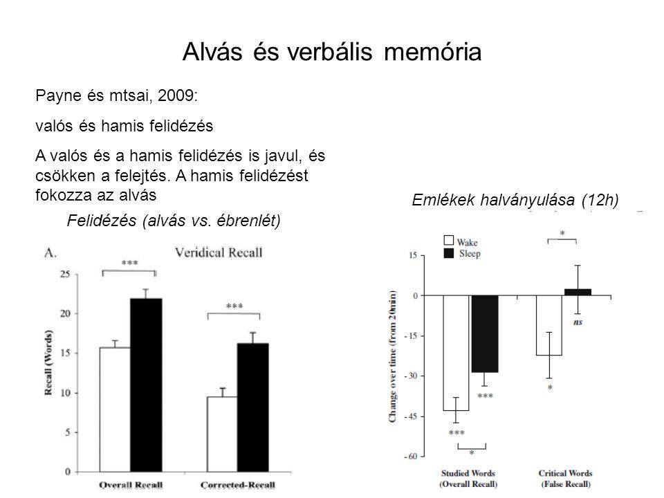Alvás és verbális memória Payne és mtsai, 2009: valós és hamis felidézés A valós és a hamis felidézés is javul, és csökken a felejtés. A hamis felidéz