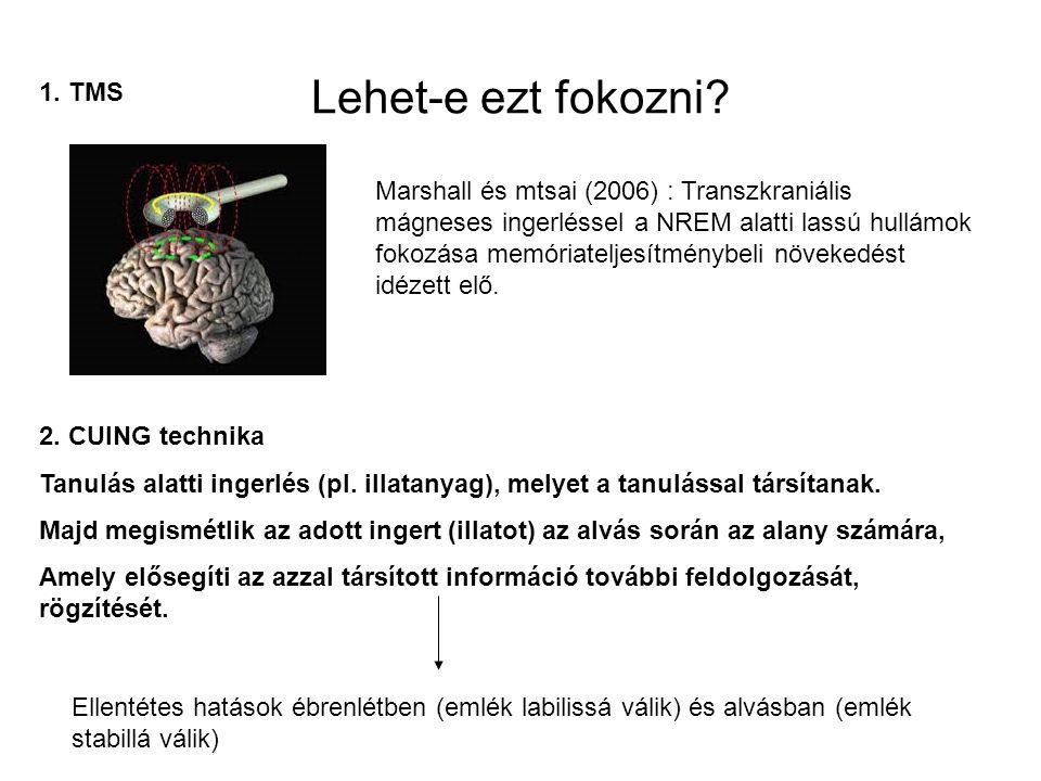 Lehet-e ezt fokozni? Marshall és mtsai (2006) : Transzkraniális mágneses ingerléssel a NREM alatti lassú hullámok fokozása memóriateljesítménybeli növ