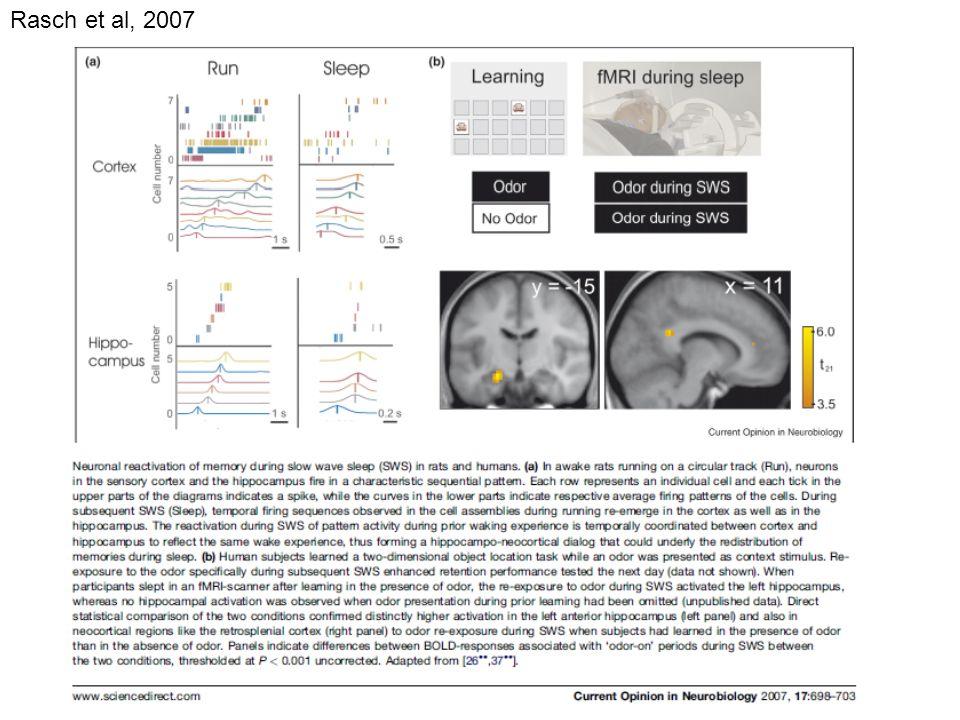 Rasch et al, 2007