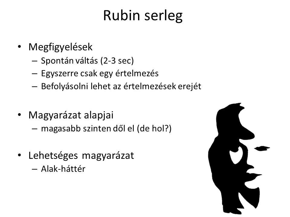 Rubin serleg Megfigyelések – Spontán váltás (2-3 sec) – Egyszerre csak egy értelmezés – Befolyásolni lehet az értelmezések erejét Magyarázat alapjai – magasabb szinten dől el (de hol?) Lehetséges magyarázat – Alak-háttér