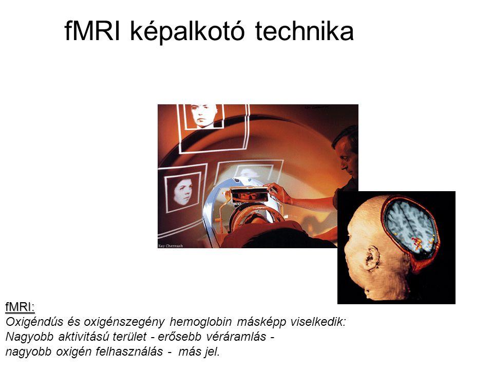 fMRI: Oxigéndús és oxigénszegény hemoglobin másképp viselkedik: Nagyobb aktivitású terület - erősebb véráramlás - nagyobb oxigén felhasználás - más jel.