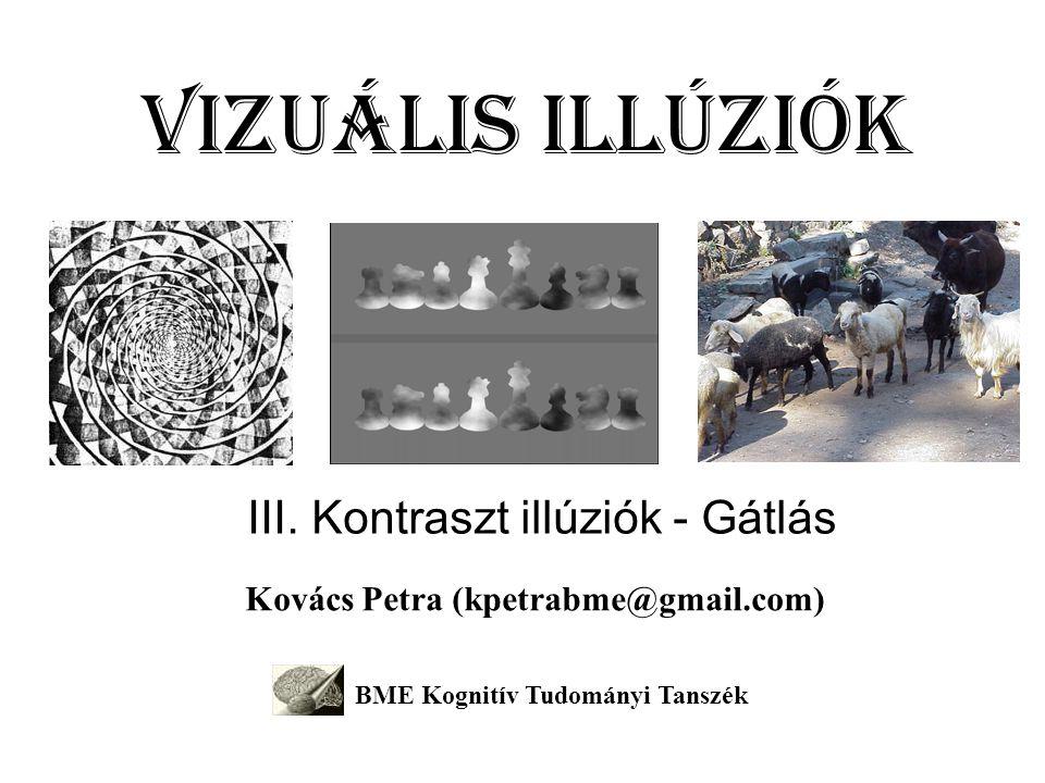 Vizuális illúziók III. Kontraszt illúziók - Gátlás Kovács Petra (kpetrabme@gmail.com) BME Kognitív Tudományi Tanszék