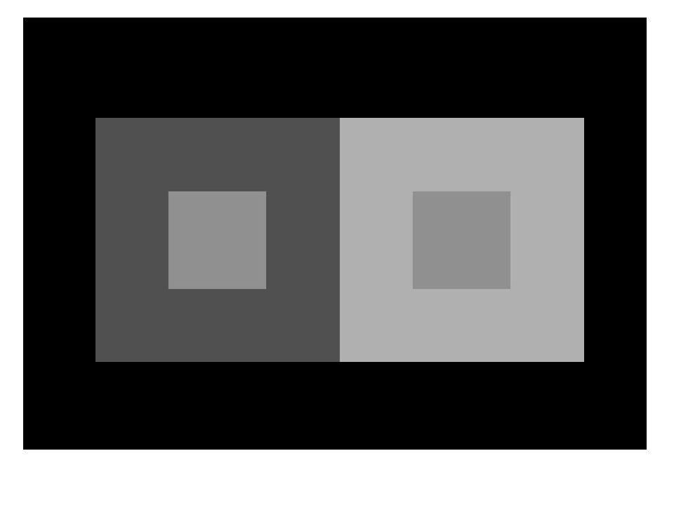 Vasarely illúzió Megfigyelések Homogén szürke felszínek mégis két világító átló Magyarázat alapjai laterális gátlás