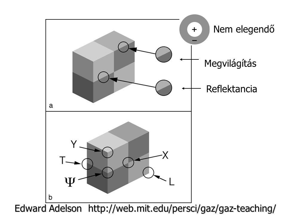 Nem elegendő Megvilágítás Reflektancia Edward Adelson http://web.mit.edu/persci/gaz/gaz-teaching/