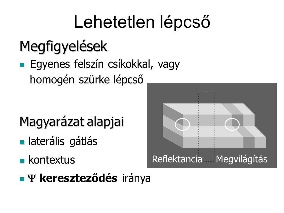 Lehetetlen lépcső Magyarázat alapjai laterális gátlás kontextus  kereszteződés iránya Megfigyelések Egyenes felszín csíkokkal, vagy homogén szürke l