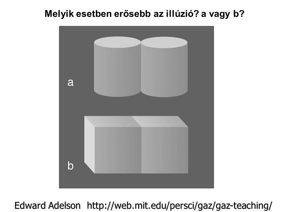 Edward Adelson http://web.mit.edu/persci/gaz/gaz-teaching/ Melyik esetben erősebb az illúzió? a vagy b?