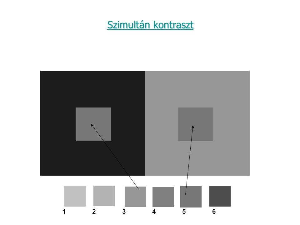 123456123456 Szimultán kontraszt Szimultán kontraszt