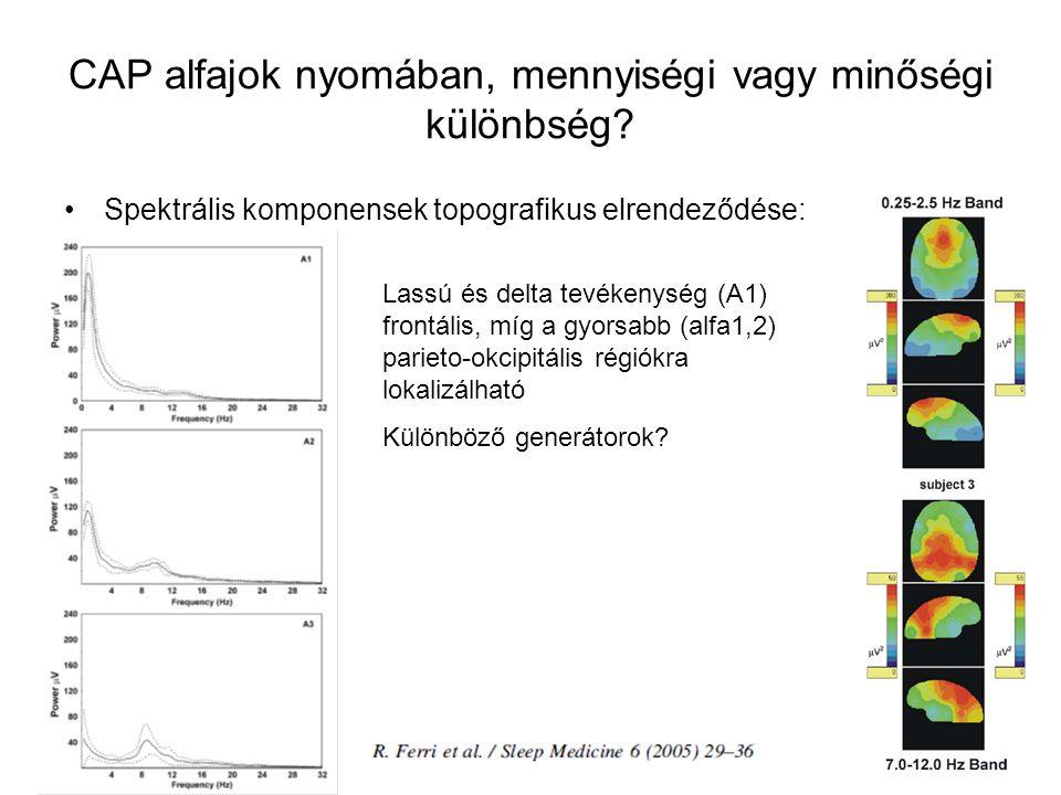 Spektrális komponensek topografikus elrendeződése: CAP alfajok nyomában, mennyiségi vagy minőségi különbség.
