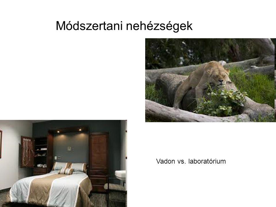 Módszertani nehézségek Vadon vs. laboratórium