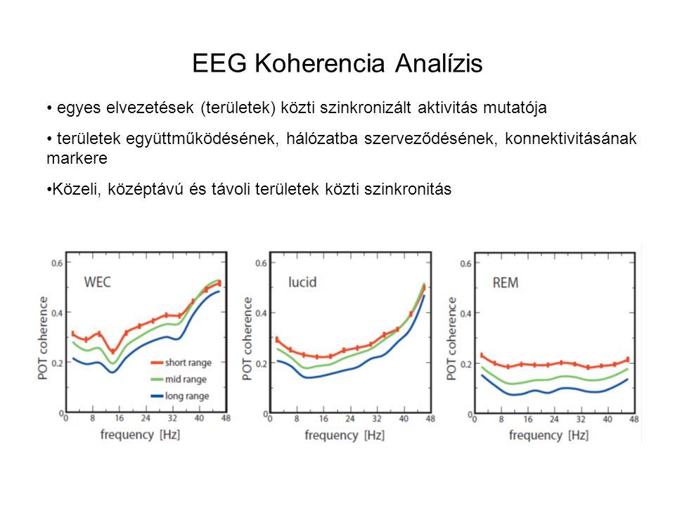 EEG Koherencia Analízis egyes elvezetések (területek) közti szinkronizált aktivitás mutatója területek együttműködésének, hálózatba szerveződésének, k