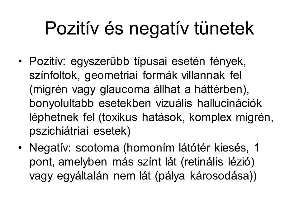 Pozitív és negatív tünetek Pozitív: egyszerűbb típusai esetén fények, színfoltok, geometriai formák villannak fel (migrén vagy glaucoma állhat a hátté