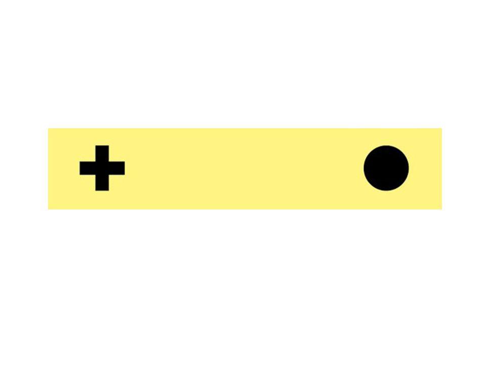 Nervus abducens (VI.) Távolító ideg – az oldalsó egyenes izmot idegzi be,hosszan fut, emiatt nyomásra érzékeny lesz Eredése: magva a hídban, a 4.