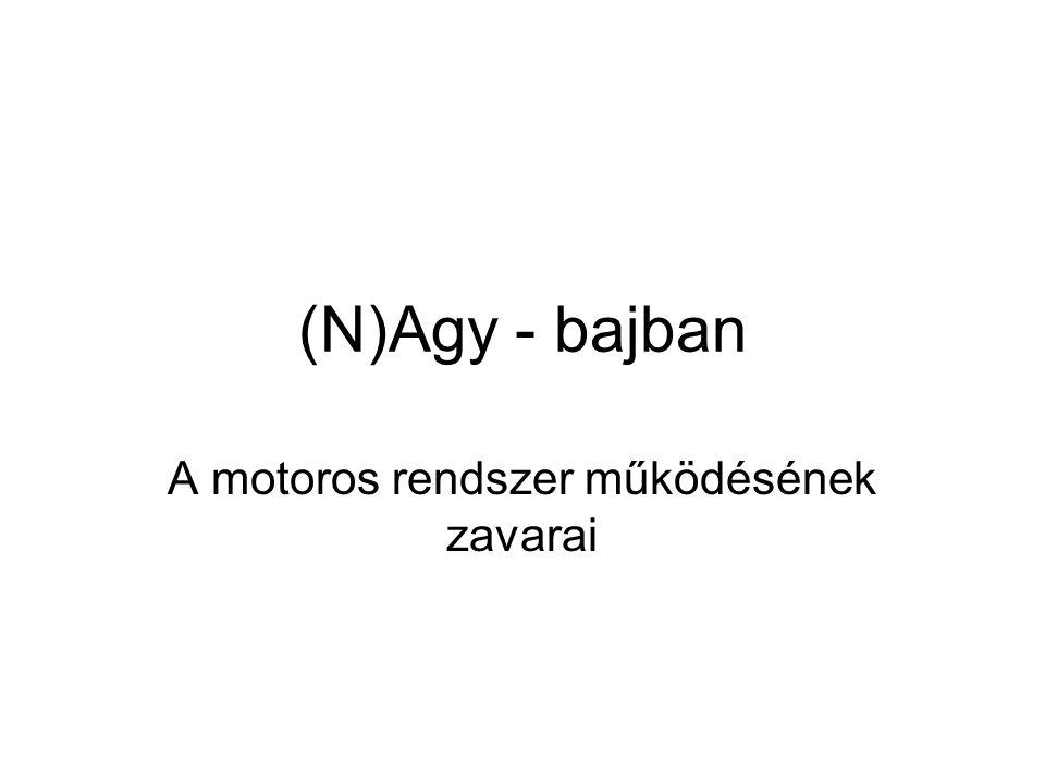 (N)Agy - bajban A motoros rendszer működésének zavarai