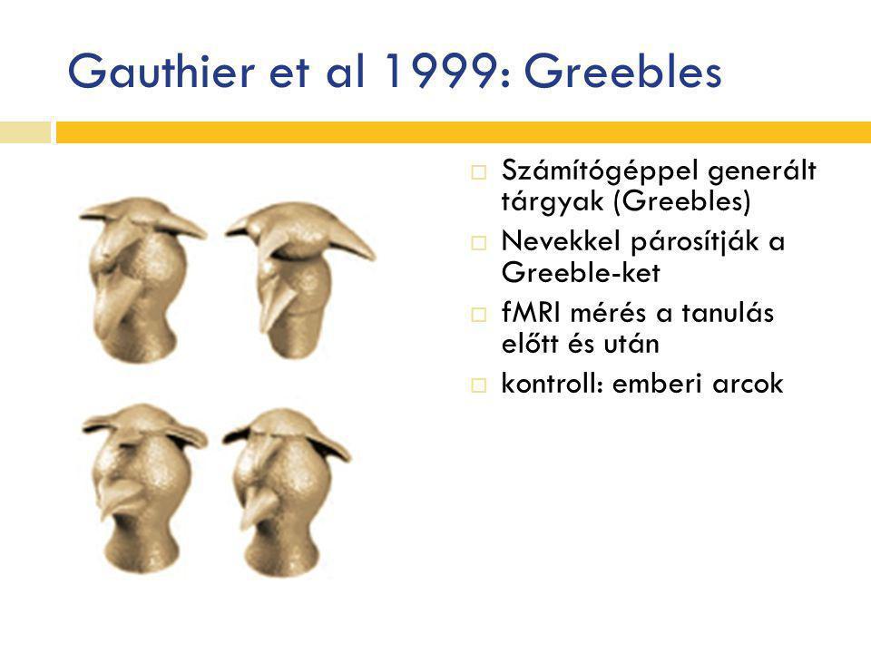 Gauthier et al 1999: Greebles  Számítógéppel generált tárgyak (Greebles)  Nevekkel párosítják a Greeble-ket  fMRI mérés a tanulás előtt és után  k