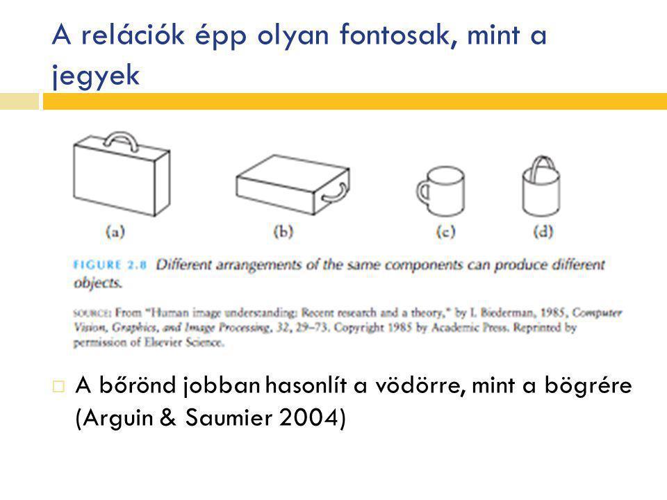 A relációk épp olyan fontosak, mint a jegyek  A bőrönd jobban hasonlít a vödörre, mint a bögrére (Arguin & Saumier 2004)