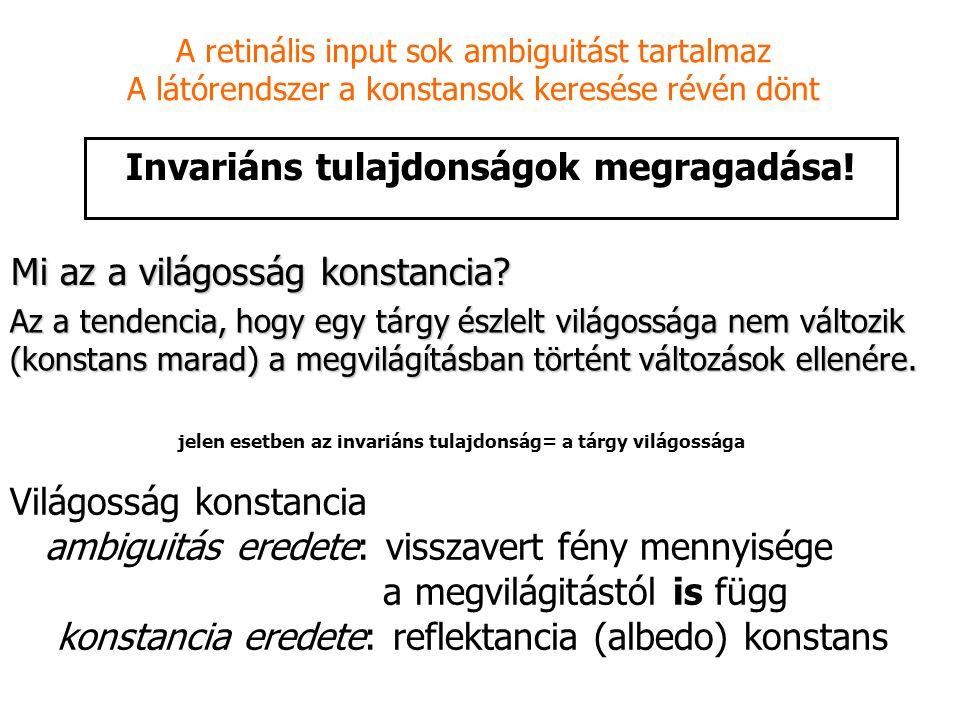Invariáns tulajdonságok megragadása! A retinális input sok ambiguitást tartalmaz A látórendszer a konstansok keresése révén dönt Világosság konstancia