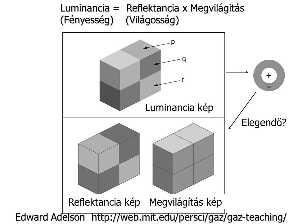 Luminancia = Reflektancia x Megvilágitás (Fényesség) (Világosság) Luminancia kép Reflektancia képMegvilágítás kép Elegendő? Edward Adelson http://web.