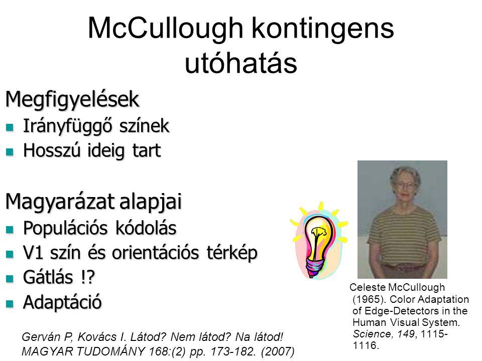 McCullough kontingens utóhatás Celeste McCullough (1965). Color Adaptation of Edge-Detectors in the Human Visual System. Science, 149, 1115- 1116. Meg