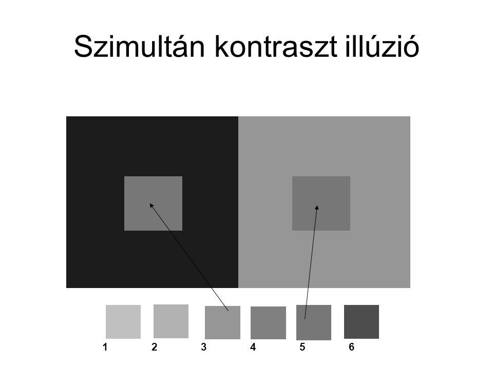 Szimultán kontraszt illúzió 123456123456