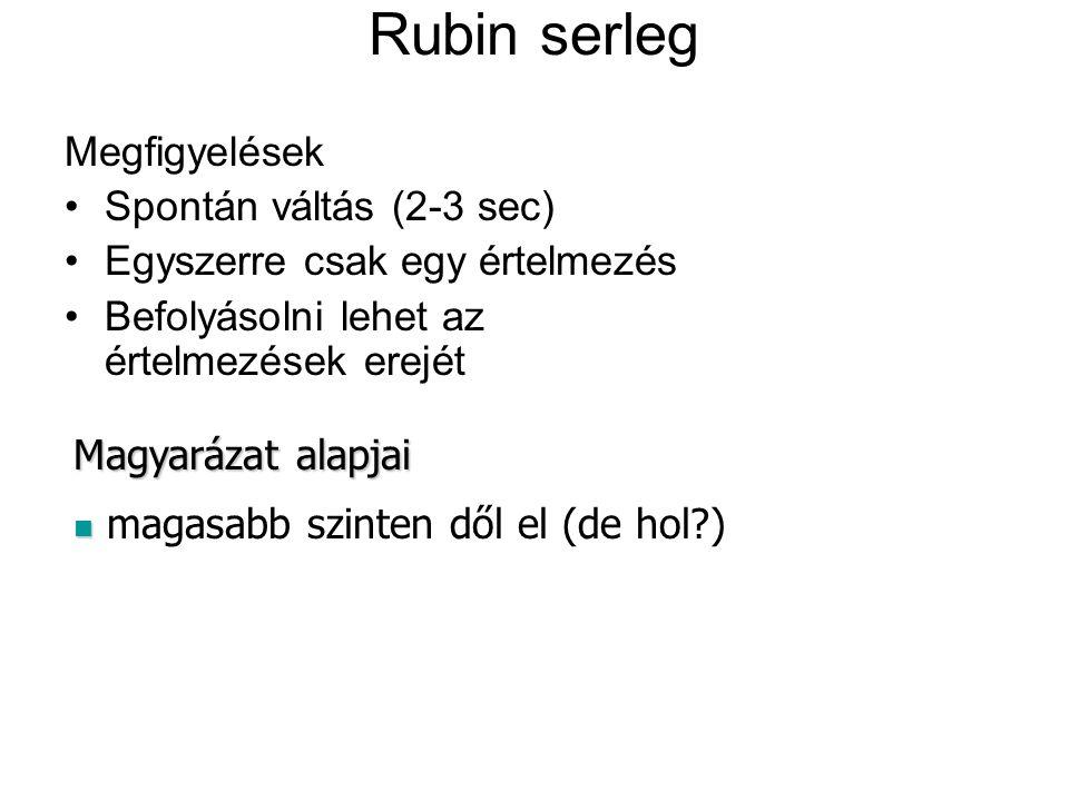 Rubin serleg Megfigyelések Spontán váltás (2-3 sec) Egyszerre csak egy értelmezés Befolyásolni lehet az értelmezések erejét Magyarázat alapjai magasabb szinten dől el (de hol?)
