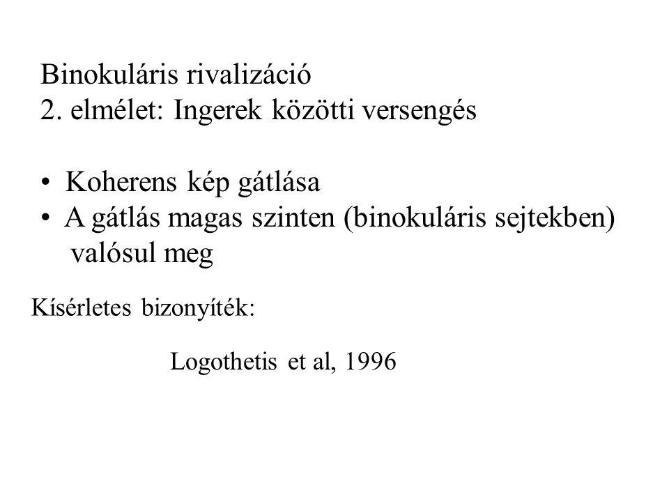 Binokuláris rivalizáció 2.