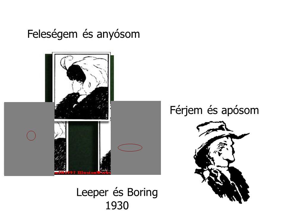Leeper és Boring 1930 Feleségem és anyósom Férjem és apósom